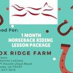 1 month Horseback riding lesson package